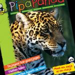 gratis babyspullen: proefnummer pipapanda